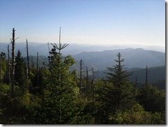 Clingmans Dome (1)