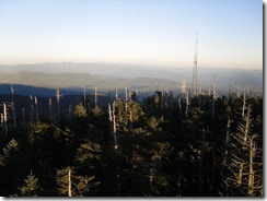 Clingmans Dome (4)