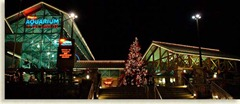 Gatlinburg at Night (2)